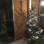 クリスマスの準備はコストコとIKEAで!おしゃれなツリーやチキンをコスパよく揃えよう